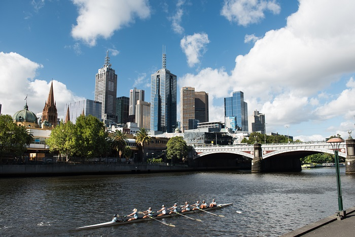 Rowers on the Yarra