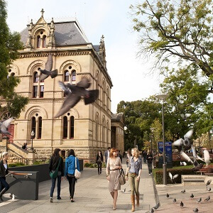 1 Day Adelaide City Tour