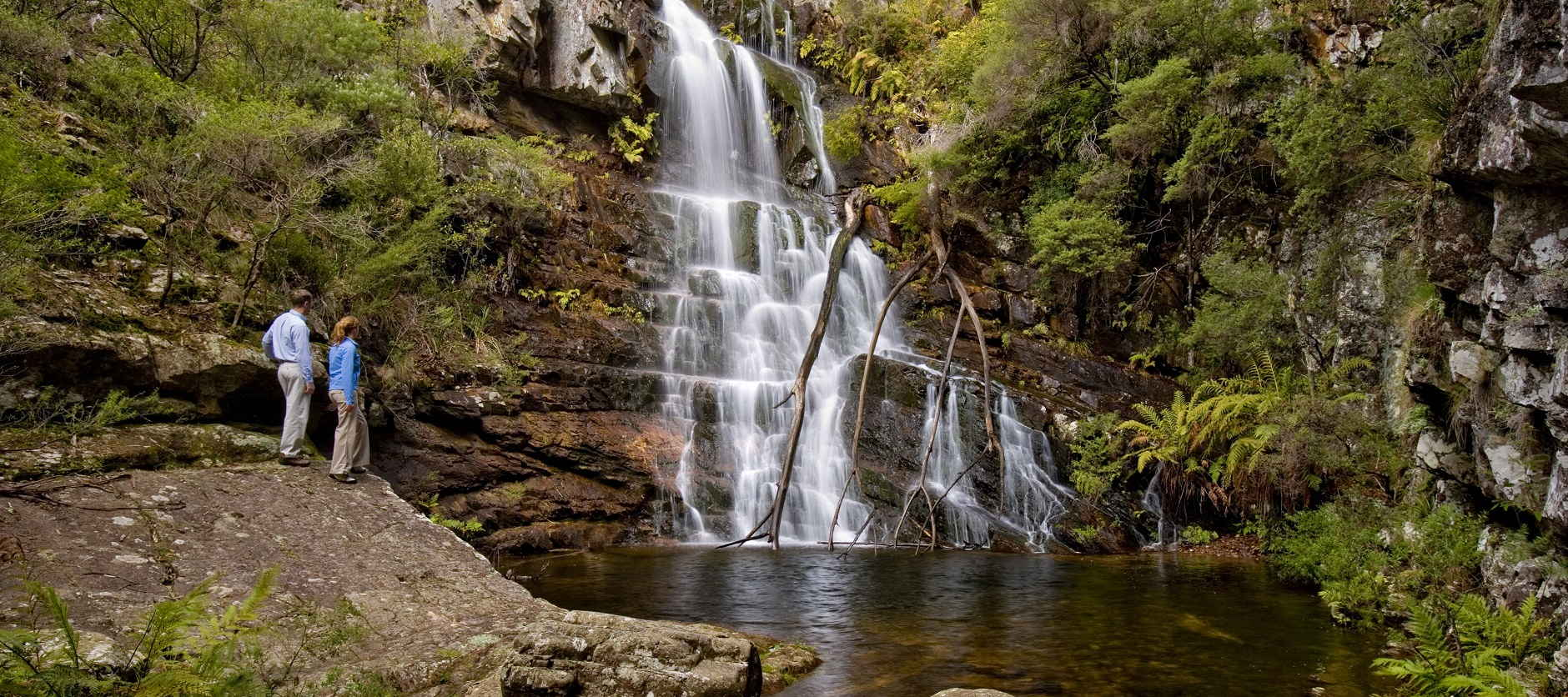 Blue Mountains - Falls