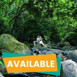 1 Day Cape Tribulation and Daintree Tour