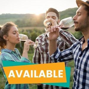 1 Day Hunter Valley Tour