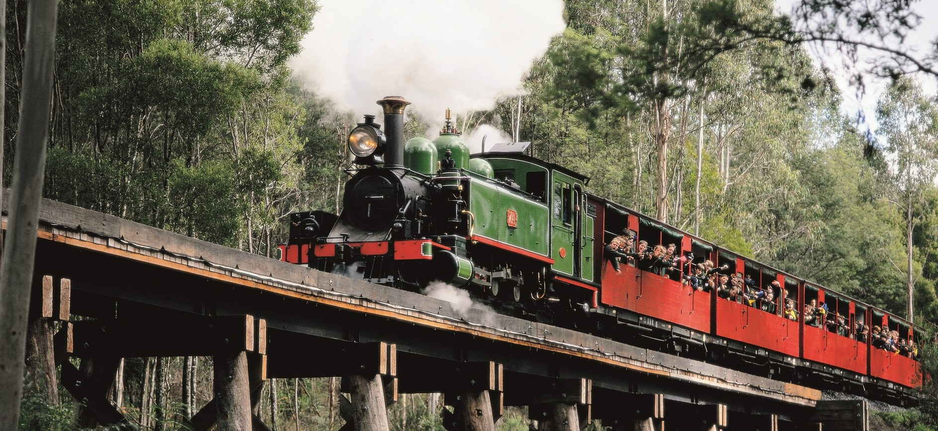 Half Day Puffing Billy Tour from Melbourne $79