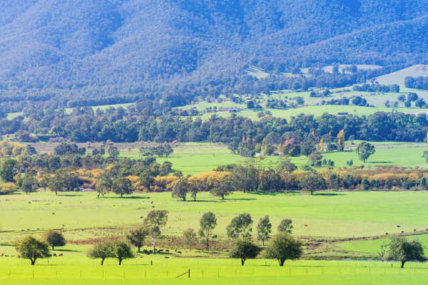 High Country Victoria