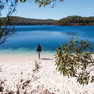 1 Day Fraser Island Tour