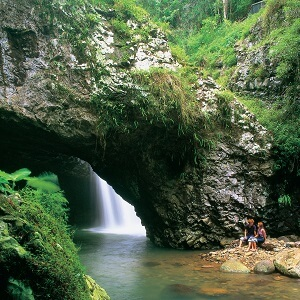 1 Day Natural Arch and Springbrook Tour