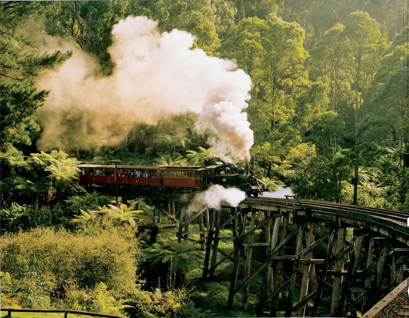 The Dandenong Ranges and Puffing Billy