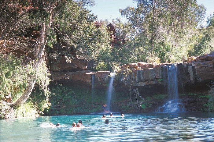 Fern Pool, in Dales Gorge, Karijini National Park