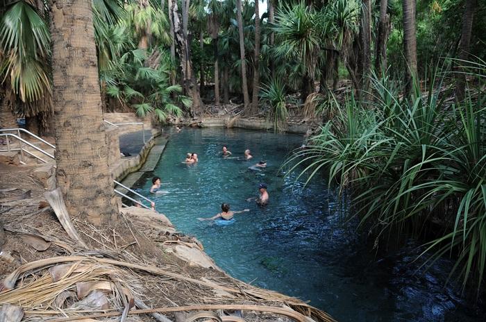 Mataranka Thermal Springs