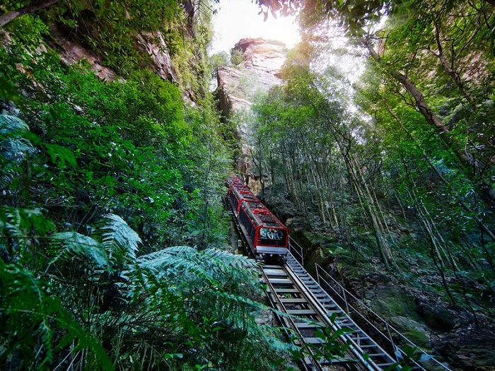 The Four Attractions at Scenic World