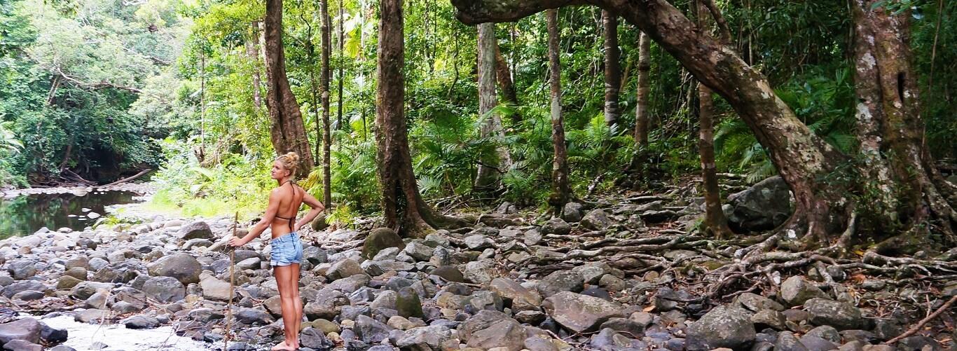Cape Tribulation and Daintree Rainforest Tour - Emegen Creek