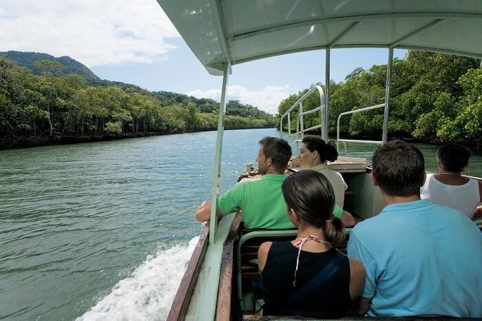 Wildlife Spotting Cruise