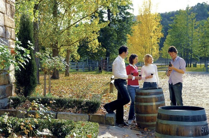 Wines of the Hunter Valley