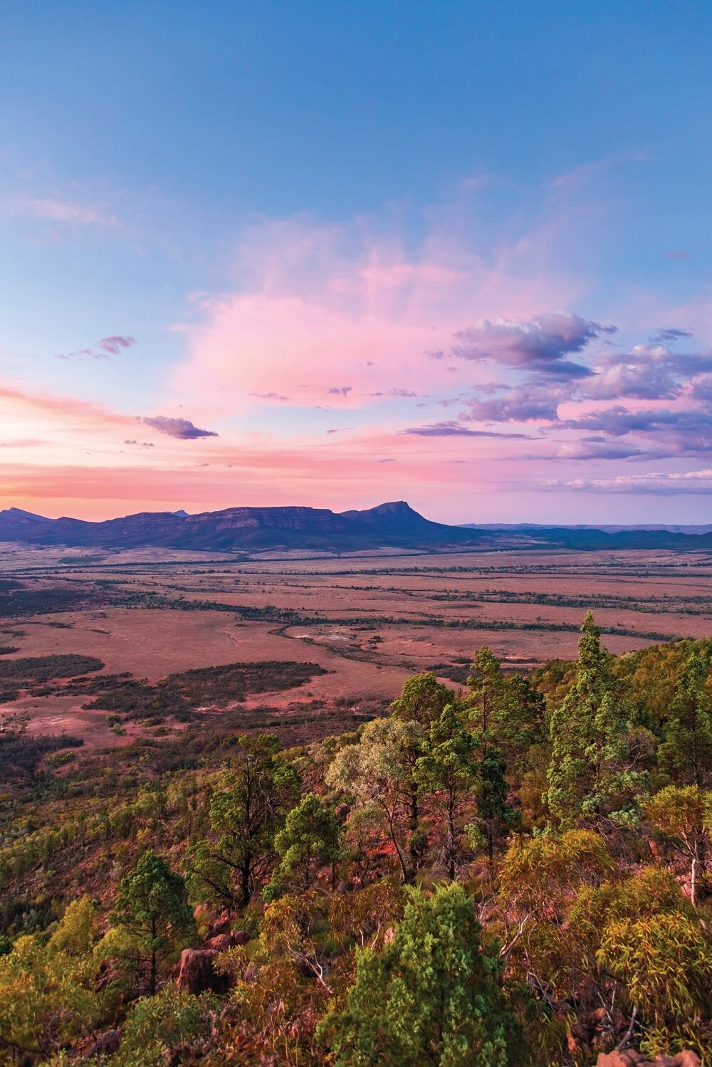 Overlooking Flinders Ranges