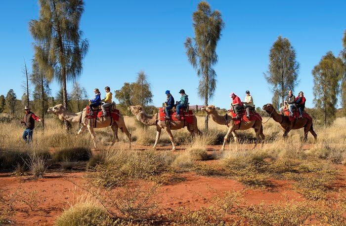 Optional Camel Ride
