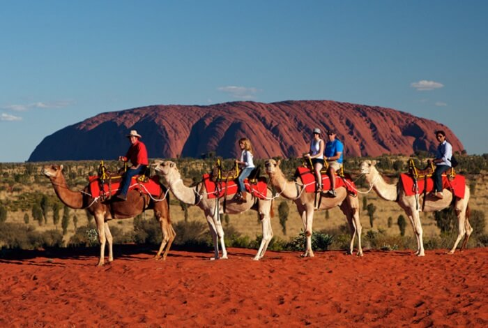 Take a Camel Ride in Uluru