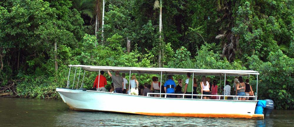 Crocodile Cruise in the Daintree River
