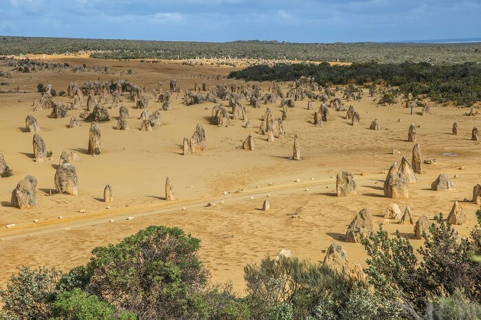 The Pinnacles, Nambung National Park WA