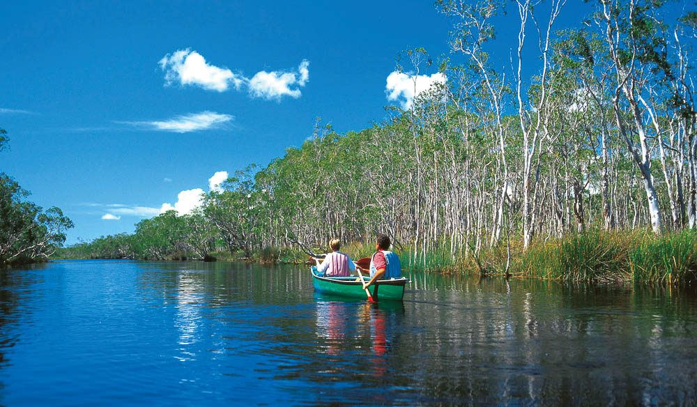 5 Different Ways on How To Explore Noosa Everglades
