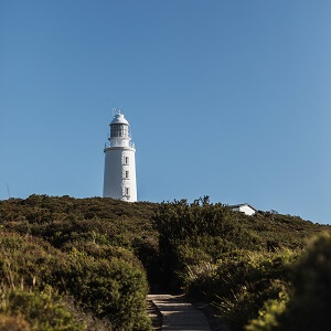 Bruny Island, Lighthouse and Lunch Tour