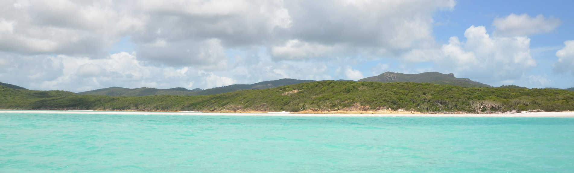 Are There Crocodiles in the Whitsundays?