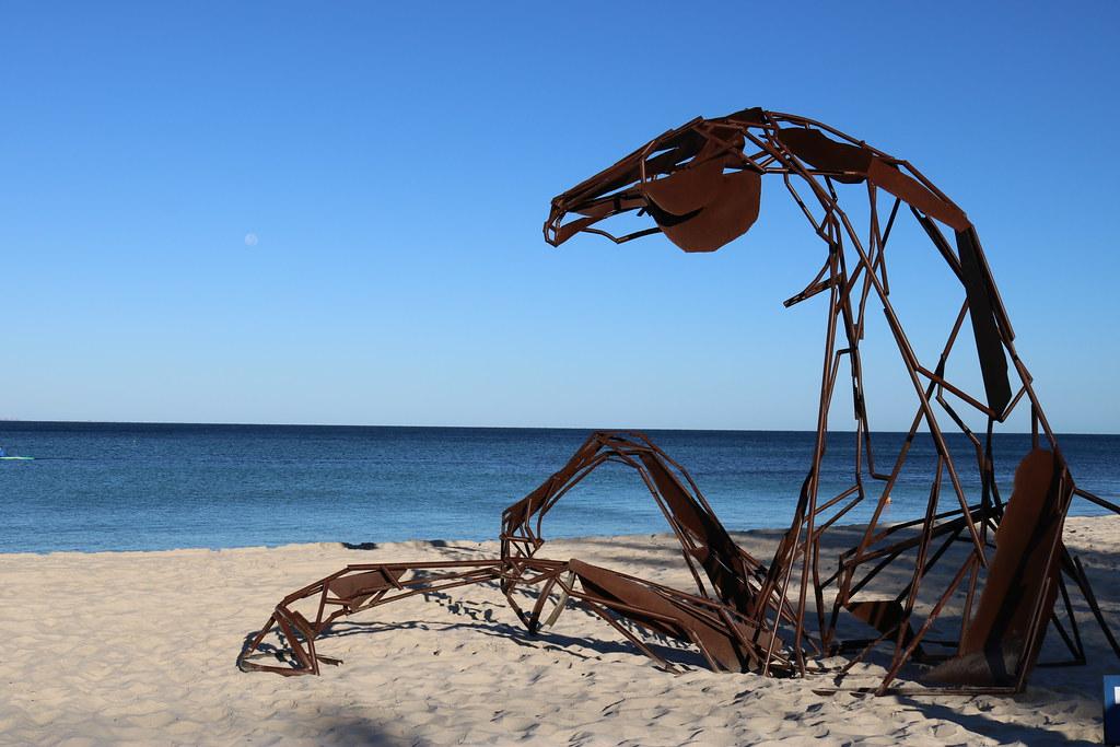 Bondi's Spectacular Sculpture by the Sea Celebration