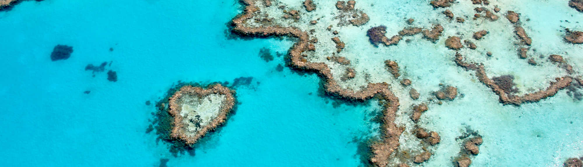 Seeing the Heart Reef in the Whitsundays