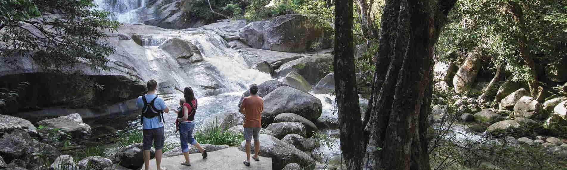 Daintree Rainforest & Cape Tribulation Tours