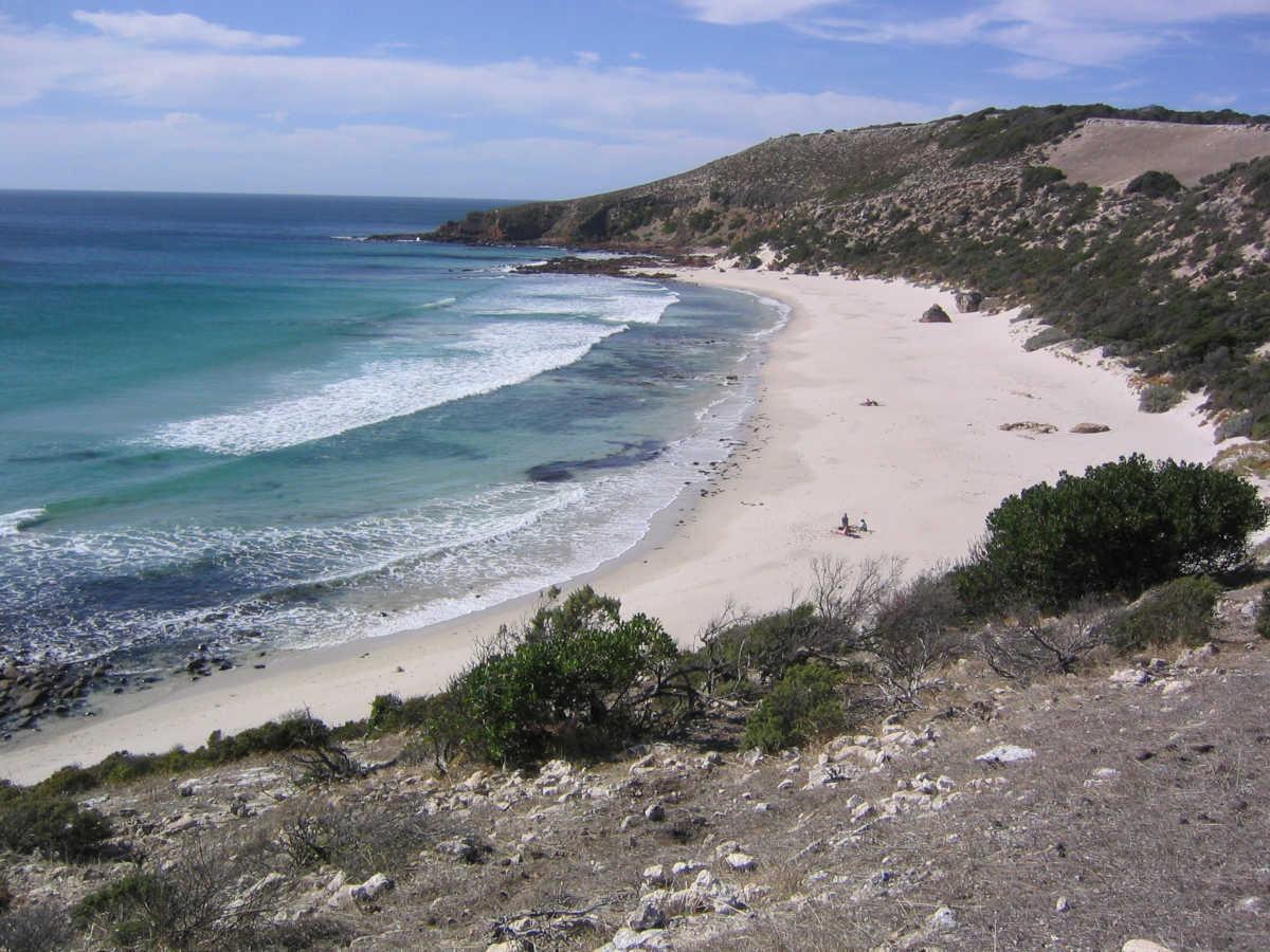 How You Can Help Kangaroo Island Rebuild?