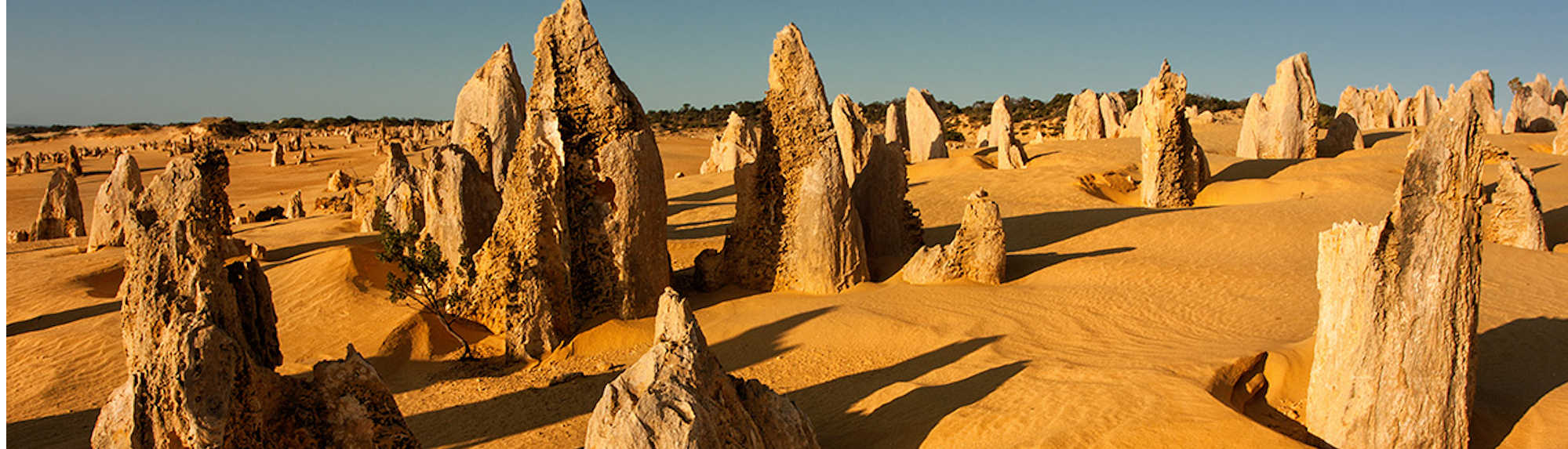 How Did the Pinnacles Form in Western Australia?