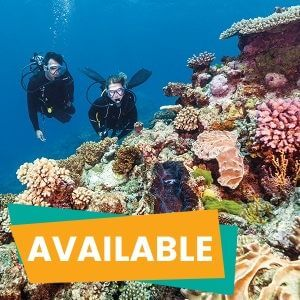 1 Day Great Barrier Reef Cruise Deluxe