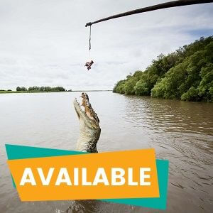 Afternoon Jumping Crocodiles Tour from Darwin