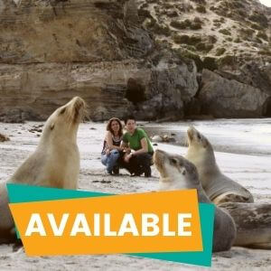 1 Day Kangaroo Island Tour