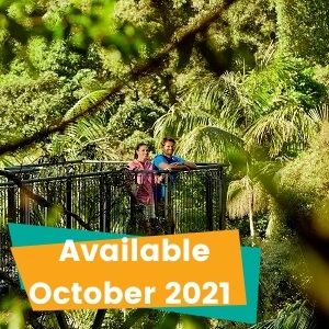 1 Day Mount Tamborine Tour