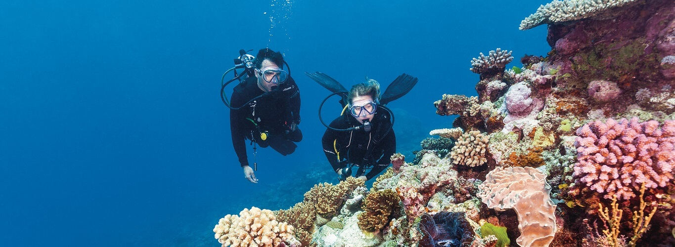 Great Barrier Reef Cruise Deluxe