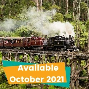 Half-day Puffing Billy Tour