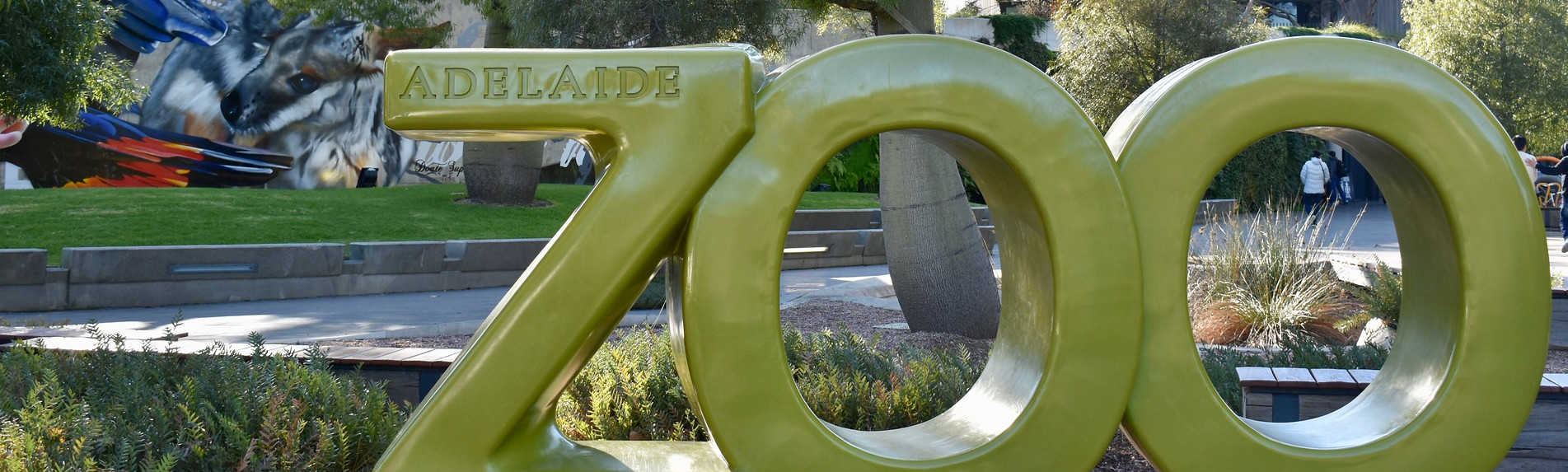 Why You Should Visit the Adelaide Zoo