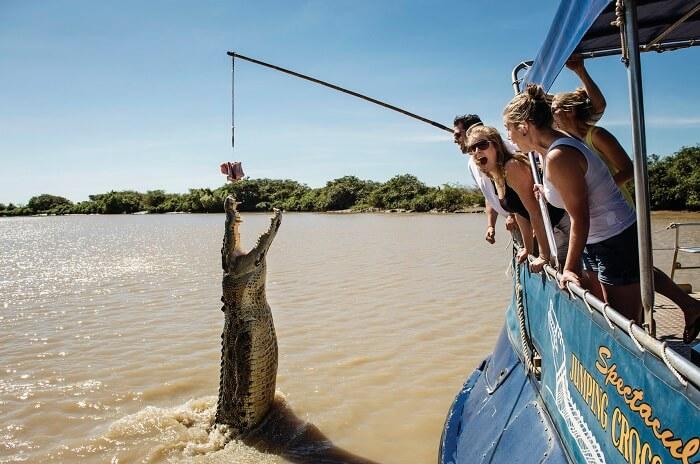 Jumping Crocodile Cruise
