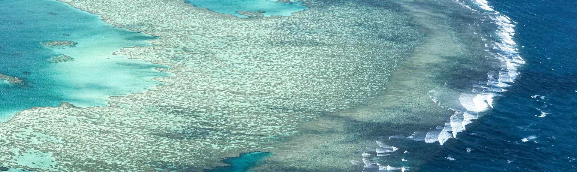 Which is the Best Great Barrier Reef Tour?