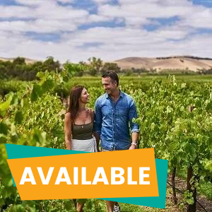 1 Day Barossa Valley and Hahndorf Tour