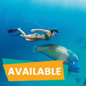 Cairns Tours Package