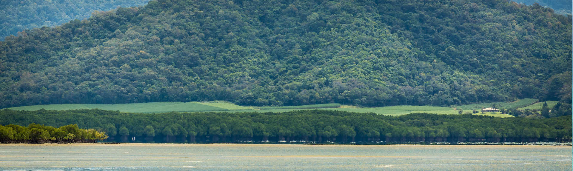 Can you go to the Daintree Rainforest on your own?