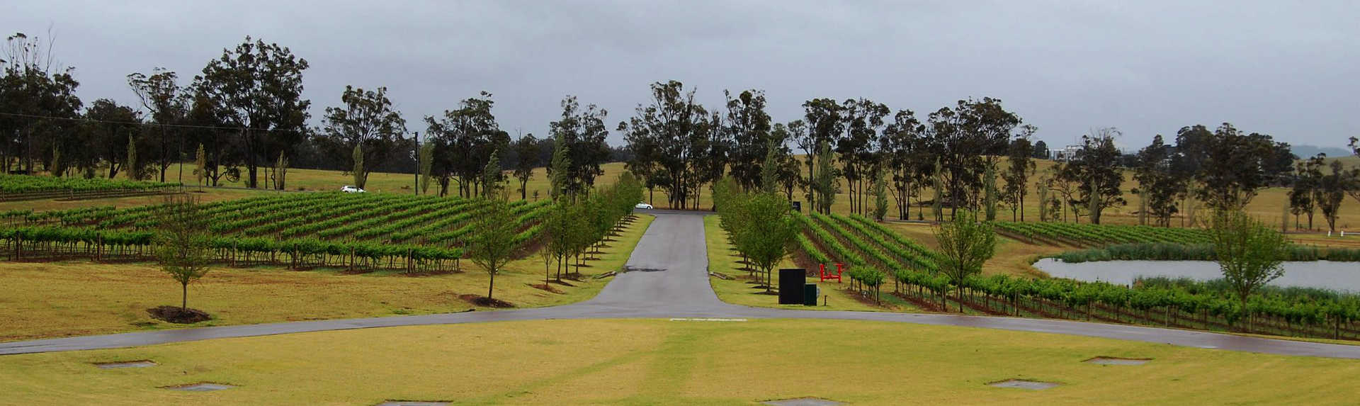 How much is a Hunter Valley wine tour?