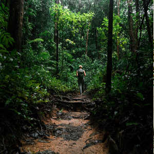 6 Best Things To Do in Cairns