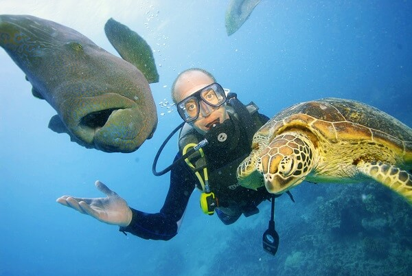 which is the best Great Barrier Reef tour